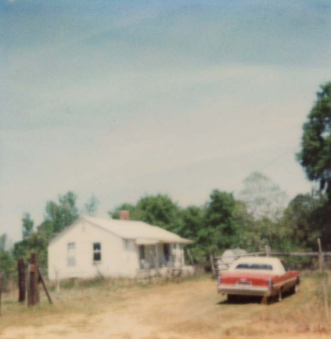 Polaroid, Jennifer Olson 2