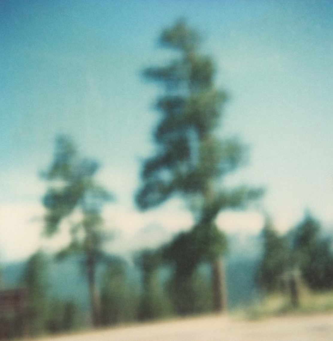 Polaroid, Jennifer Olson JO13