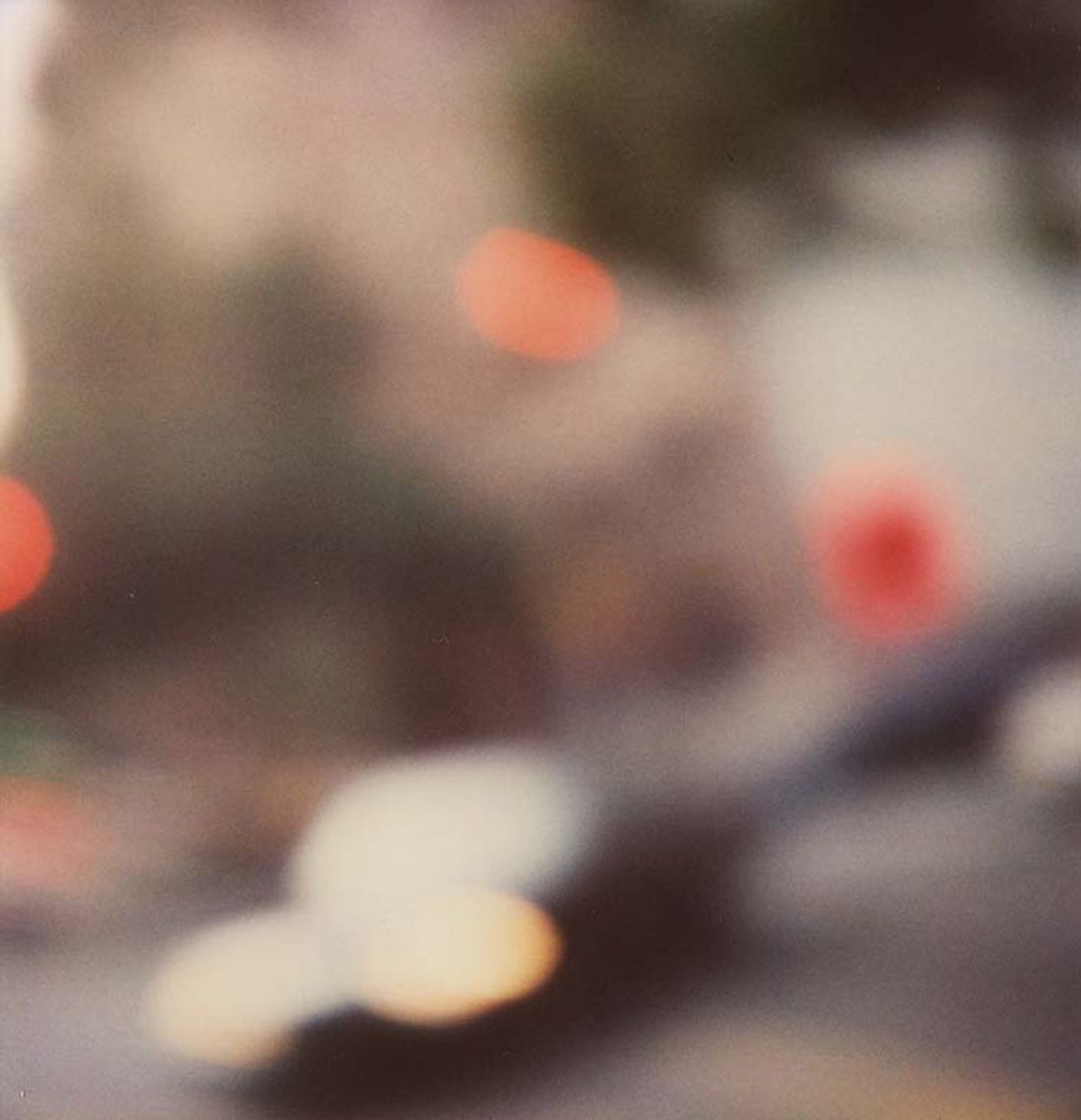 Polaroid, Jennifer Olson cl3