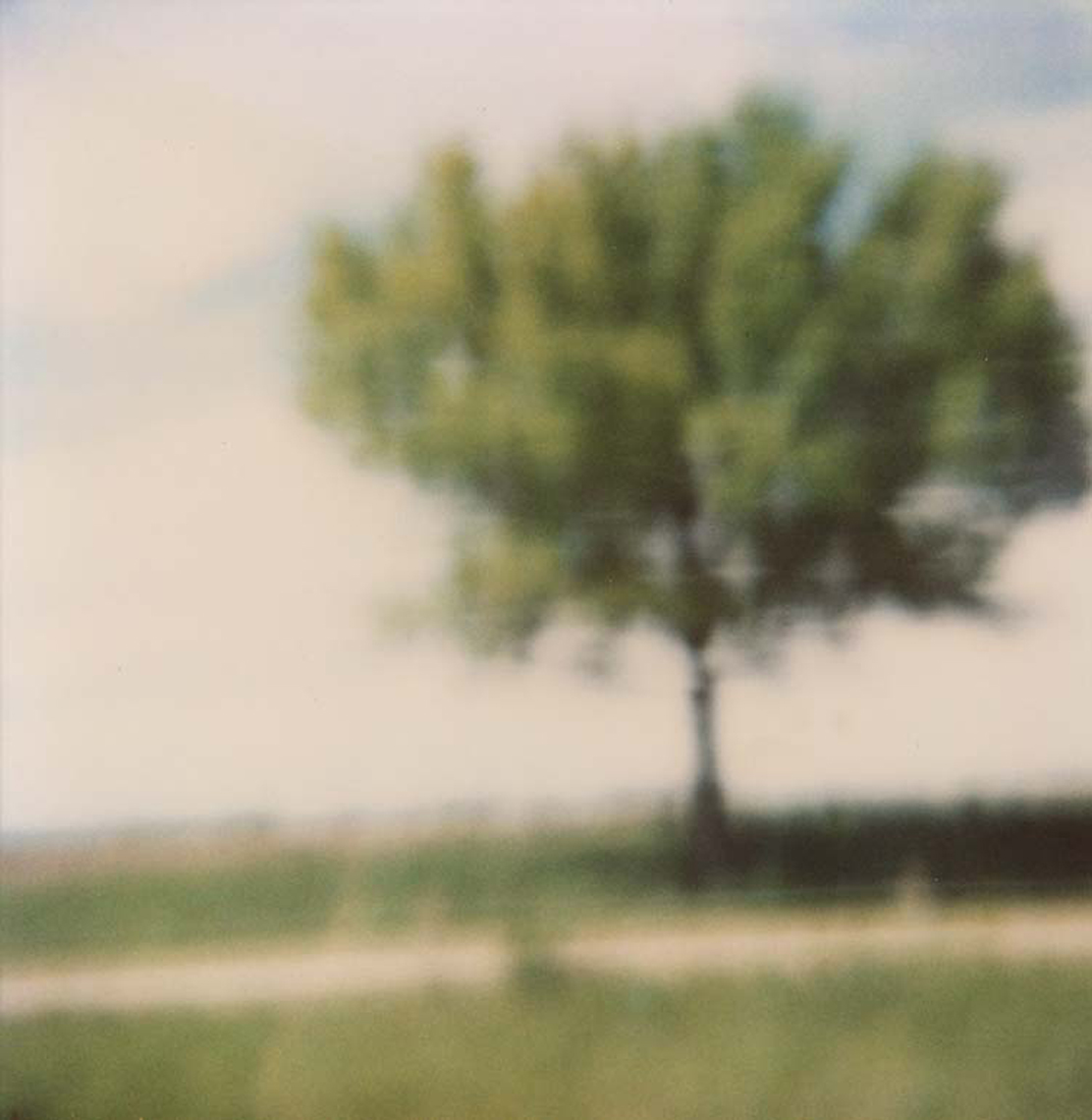 Polaroid, Jennifer Olson j9